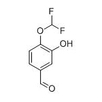 Leading Manufacturer for Octreotide Acetate -